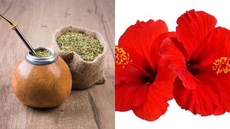 функциональные ингредиенты в продуктах питания и напитках
